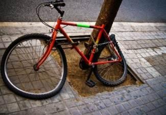 cyclist-pedestrian accident